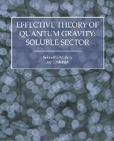 Effective Theory of Quantum Gravity:Soluble Sector